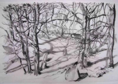 """Ellen Luise WEISE, """"Waldstück"""", Tusche auf Papier (2017)"""