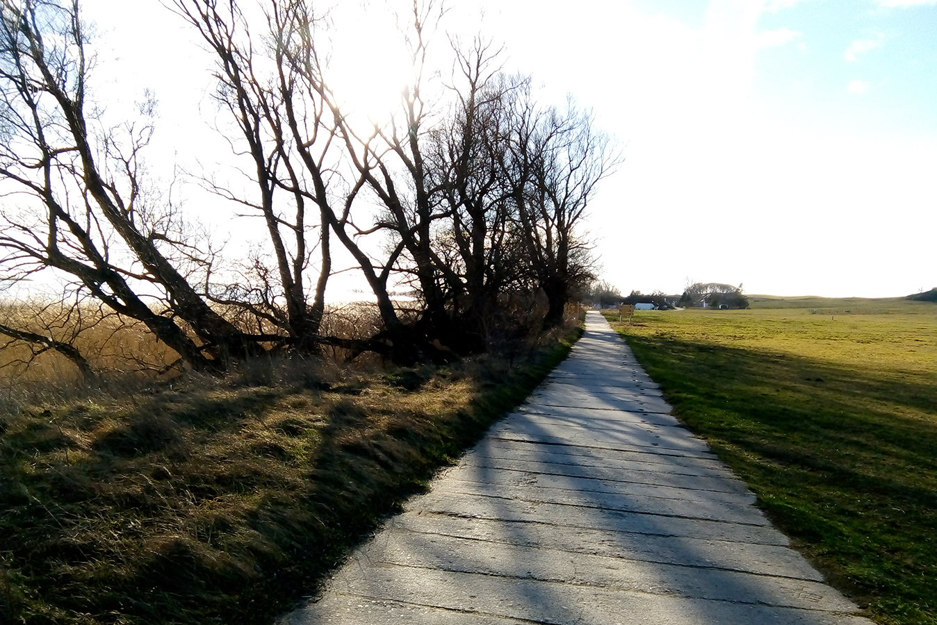 Insel Hiddensee - Weg beim Enddorn